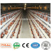 Best Price Automatic Layer Farm Cage