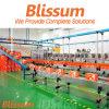 Industrial Bottle Chain Plate Conveyor Belt