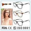 Latest New Design Acetate Frame Eyewear Eyeglass Optical