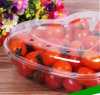 Eco-friendly plastic packing food tray for fruit(PP tray)