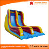 2017 New Design Invasion Double Lane Slide Inflatable Slide (T4-252)