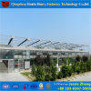Venlo Roof Glass Greenhouse Commercial Green House Manufacturer
