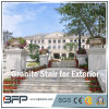 Chinese Building Material Granite Stair for Exterior