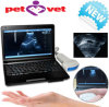 10 Inch Laptop Veterinary / Vet Ultrasound Scanner
