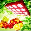 1000W 1200W COB LED Grow Lights for Medical Plants