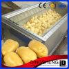 Automatic Brush Potato Cassawa Onion Washing Machine