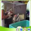 Ss304 Coconut Peeler/Coconut Peeling Machine