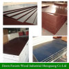 Red Black Brown Color Marine Plywood
