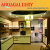 Modern Kitchen Cabinets (AGK-041)
