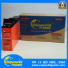 Front Terminal 12V125ah Battery From Vasworld Power in China