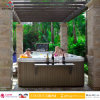 Shining Arrival Jacuzzi Outdoor SPA Hot Tub with Foot Massage