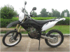 250CC Dirt Bike (GBTD10-250D)