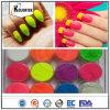 Neon Nail Polish Powder Pigment, Fluorescent Color Pigment Powder for Nail Polish