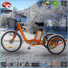 250W Electric Tricycle with Shimano Speed Disk Brake