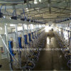 Hl-G2 Cow Milking Machine for Sale