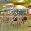 Newest Children Amusement Machine Ride Animal Toy Mini Flying Chair