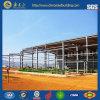 Almacén prefabricado/almacén de la estructura de acero (SSW-14302)