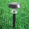 Luce a energia solare del giardino (VS-80004W)