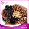 Estensione pre tenuta da adesivo brasiliana dei capelli umani di punta del chiodo U