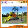 2015年のVasiaの屋外の子供の運動場の庭の振動