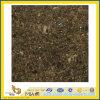 Natural Polished Labrador Antique Granite Tile for Wall/Flooring (YQC)