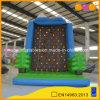 새로운 디자인 상승 벽 팽창식 암석 등반 게임 (AQ1906)