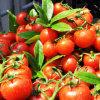 Удобрение хелата аминокислота Cu органическое