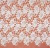 Tessuto chimico popolare del merletto