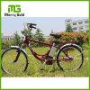 24  de la pulgada *1.75 del neumático de la fábrica ciudades Ebike 24V 250W de los hombres de la venta directo