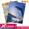 China-Schule-Briefpapier-Schule-Zubehör-kundenspezifisches Kursteilnehmer-Übungs-Buch-gebundene AusgabeA4 A5 Copybook-Papier-Notizbuch