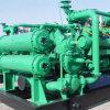 Gas-Generator-Set 20kw zu 3000kw