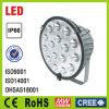 LED-Strahler Cree LED-Licht
