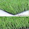 طبيعيّة خضراء ثنائيّ لون [فوتسل] مجال اصطناعيّة عشب الصين صاحب مصنع