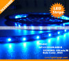 Color flexible del blanco de la tira de IP65 3528SMD 60LEDs LED