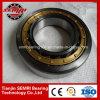 NSK Haute Qualité roulement à rouleaux cylindriques (303)