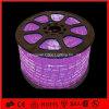 100m Decorative 36LED Rope Light/12V LED Rope Light