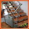 Balustrade d'intérieur en acier d'escalier de Stainles