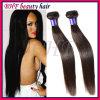 Il tessuto bagnato ed ondulato dei migliori capelli umani brasiliani di vendita, capelli umani brasiliani cuce in tessuto, tessuto dei capelli umani di Remy 100
