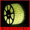 Doppio LED Duralight LED indicatore luminoso parteggiato della corda di 3528 dell'interno esterni