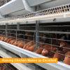Hフレームの自動電流を通された置く雌鶏か層または卵の鶏電池ケージ
