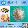 Industrielle Gelatine/technische Gelatine granuliert für Schmirgelpapier