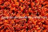 Mit hoher Schreibdichte rotes Tennis-künstliches Gras-synthetischer Rasen (TT)