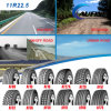 Neumático radial del carro de TBR con Nom México