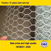 Chicken galvanizzato Wire Netting per Poultry Farms