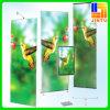 Digitals Printing Display Stand Roll vers le haut de PVC Flex Vinyl Banner