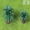 De geschraapte Korte ModelBoom van de Kokospalm