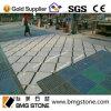 中国のベージュ大理石の正方形の円形浮彫りのタイル