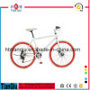 새로운 Design Alloy 700c Fixed Gear Bike 또는 Fixie Bicycle