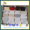 Cores diferentes do quartzo de pedra de Atficial para a decoração da cozinha