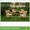 庭のテラスの柳細工の藤の屋外の家具(GN-8645D)